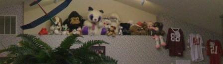 Griff's stuffed animal decor